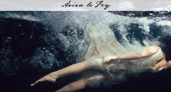 aviva-screenshot